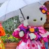 【USJ】雨や台風時のパレード、キャラクターグリーティングについて